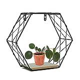 Diafrican Sechseckiges Wandregal, Kreatives Hexagon Regal, für Luftpflanzen Deko zum Aufhängen an Wand, als Tischdekoration Verwendbar, Eisen Hexagonal Dekoration