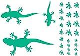 Samunshi® Gecko Wandtattoo Creativ-Set in 5 Größen und 25 Farben (32x22cm türkis)