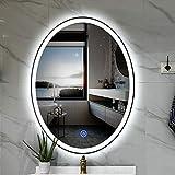 Ovaler Badezimmer Kosmetik-LED-Spiegel für Wandspiegelbeleuchtete Badezimmerspiegel mit Beleuchteter Beleuchtung, Wasserdichtes Hotel Smart Oval Makeup Light-Spiegel