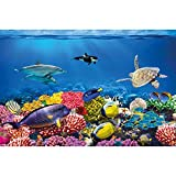 GREAT ART® Kinder Poster – Reef – Ozean Fische Delphin Aquarium Unterwasserwelt Meeresbewohner Schildkröte Korallenriff Meeresfauna Dekoration Wandbild Din A2 (42 x 59,4 cm)
