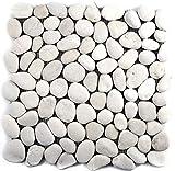 Mosaik Fliese Flußkiesel Steinkiesel Kiesel weiß weiß cream gewölbt Stich für WAND BAD WC DUSCHE KÜCHE FLIESENSPIEGEL THEKENVERKLEIDUNG BADEWANNENVERKLEIDUNG Mosaikmatte Mosaikplatte